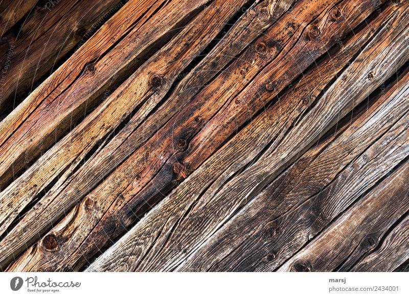 Gemeinsam diagonal Maserung Astloch Riss Hintergrundbild Holz alt authentisch einfach Zusammensein nachhaltig natürlich Originalität braun Kraft Ausdauer Sorge
