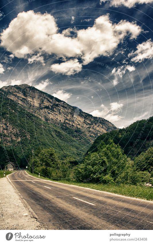 it's a long way Himmel Natur blau grün Baum Sommer Wolken Wald Straße Berge u. Gebirge Landschaft grau träumen Luft Wind Zeit