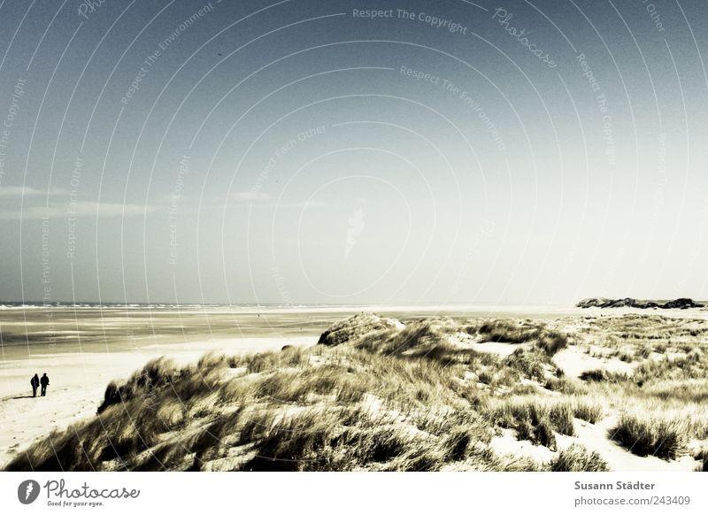 //700// Spiekeroog | long way Mensch Meer Strand Erholung Landschaft Küste Luft Paar Wellen Wind laufen Insel Sträucher Hügel Wüste Nordsee