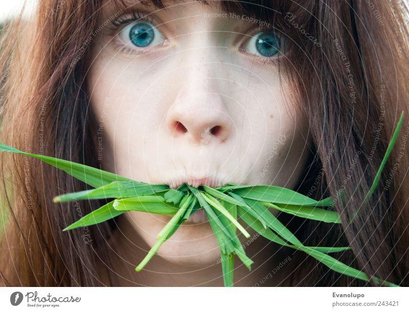 Erwischt Mensch feminin Junge Frau Jugendliche Kopf Haare & Frisuren Gesicht Auge Nase Mund 1 entdecken Essen exotisch gruselig schön nah braun grün Farbfoto