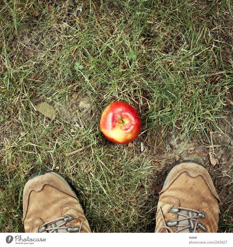 Neulich im Paradies Lebensmittel Apfel Ernährung Picknick Bioprodukte Fuß Umwelt Natur Gras Garten Wiese grün Farbfleck wandern Schuhe Wanderschuhe entdecken