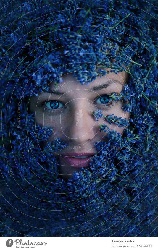 Lavender Frau Mensch blau Pflanze Farbe schön Blume Gesicht Erwachsene natürlich feminin Kunst außergewöhnlich Stimmung ästhetisch fantastisch
