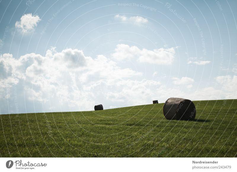 Sonnenbad Bioprodukte Sommer Berge u. Gebirge Beruf Landwirtschaft Forstwirtschaft Erneuerbare Energie Natur Landschaft Himmel Wolken Klima Schönes Wetter Gras