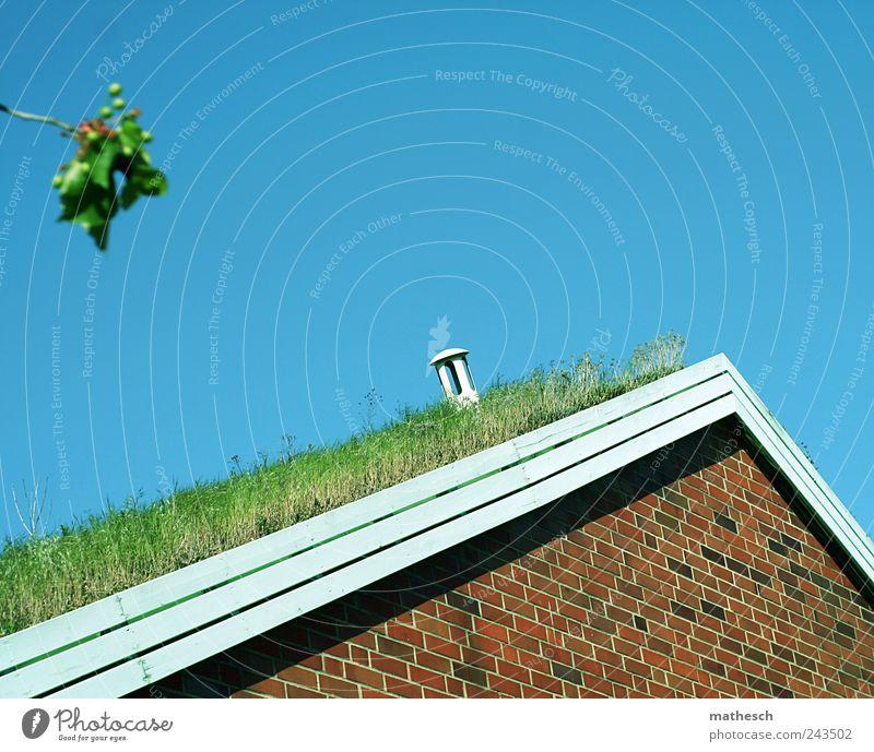 hörst du das gras wachsen? Himmel Wolkenloser Himmel Gras Haus Architektur Mauer Wand Dach Dachrinne Schornstein blau braun grün rot weiß Häusliches Leben