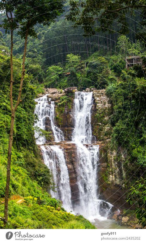 Ramboda Falls Sri Lanka II Natur Ferien & Urlaub & Reisen Wasser Landschaft Ferne Wald Berge u. Gebirge Umwelt Tourismus Freiheit Felsen Ausflug träumen Insel