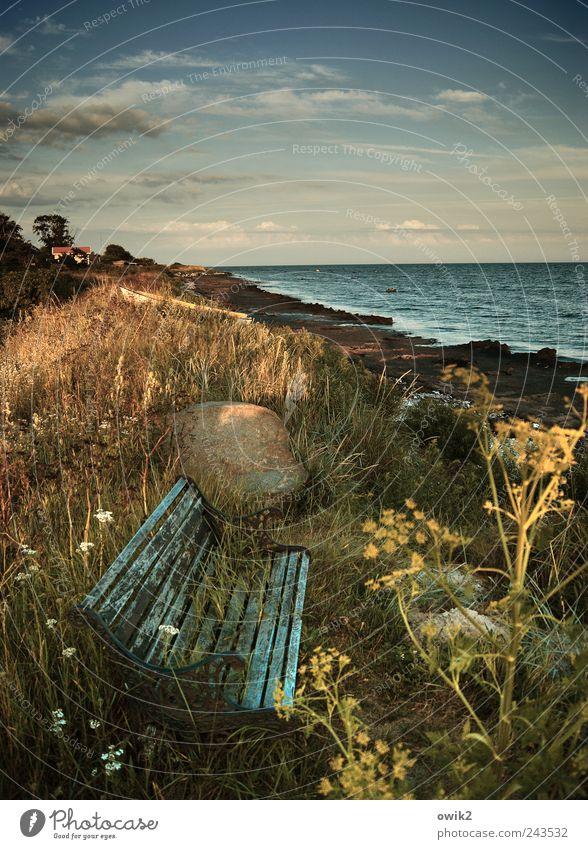 Strandgut Natur Wasser alt Himmel Meer blau Pflanze Ferien & Urlaub & Reisen ruhig Wolken Ferne Freiheit Holz träumen Stein Sand