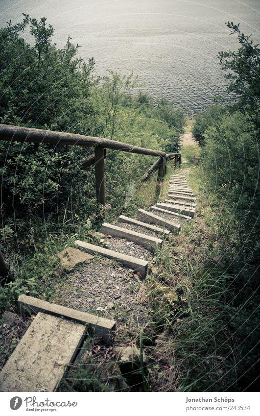 Treppe zum See II Natur Wasser grün blau Pflanze Ferien & Urlaub & Reisen Wald Landschaft Umwelt Gras Wege & Pfade Küste Park braun wandern