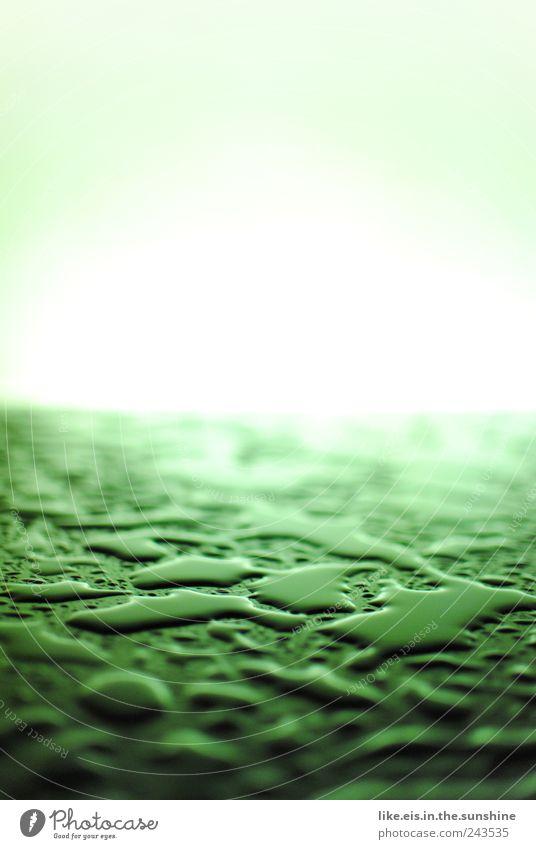 da..das blut vom dunklen lord! Wasser grün Bewegung Regen Zufriedenheit nass Wassertropfen ästhetisch Tropfen Reinigen feucht Unwetter Regenwasser Gewitter