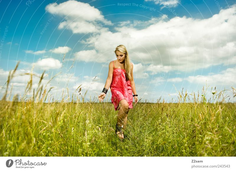 sonnenkind Mensch Natur Jugendliche schön Sommer Wolken Erholung Wiese feminin Glück träumen Landschaft Zufriedenheit blond Erwachsene gehen