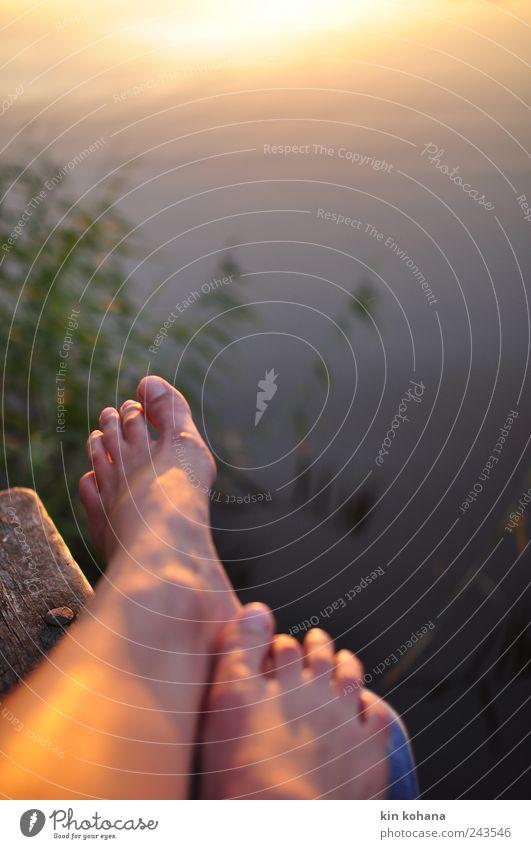 genießen Ferien & Urlaub & Reisen Ausflug Sommerurlaub Sonne Meer Frau Erwachsene Mann Paar Beine Fuß 2 Mensch Schilf Park Küste Seeufer Bucht Erholung sitzen