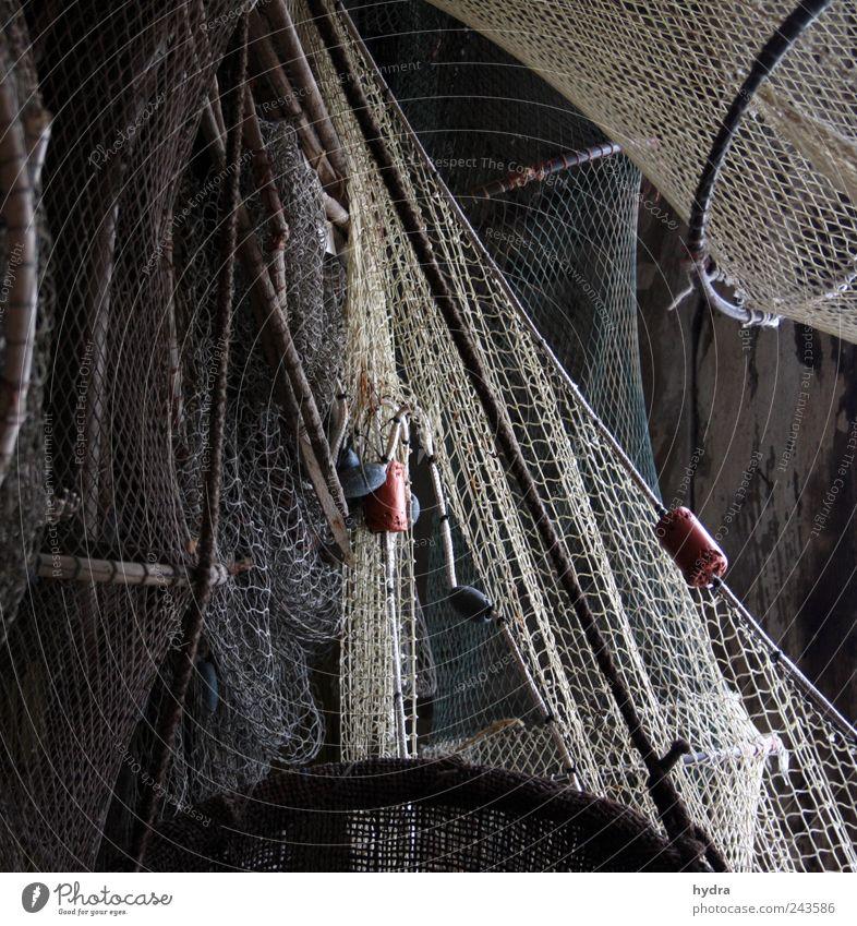 Maritime Melancholie Angeln Fischer Fischereiwirtschaft Netz Fischernetz Netzwerk Schwimmer (Angeln) Schifffahrt fangen alt einfach braun grau Verlässlichkeit