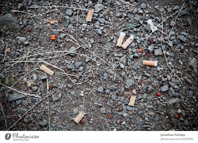 mach de kibbe aus! Baustelle Gastronomie Arbeitslosigkeit Feierabend Rauchen Bodenbelag Beeren Kies steinig dreckig Nikotin Filterzigarette Zigarette Rest Müll