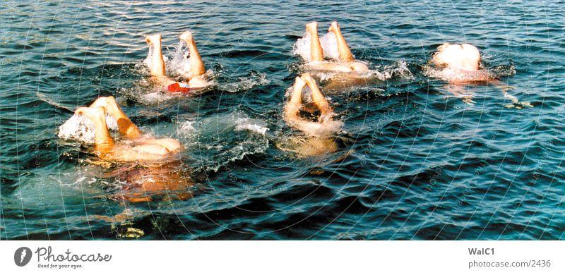 5 Wale blau Wasser Meer Menschengruppe Beine Fuß Schwimmen & Baden Wellen Hinterteil Barfuß Tier