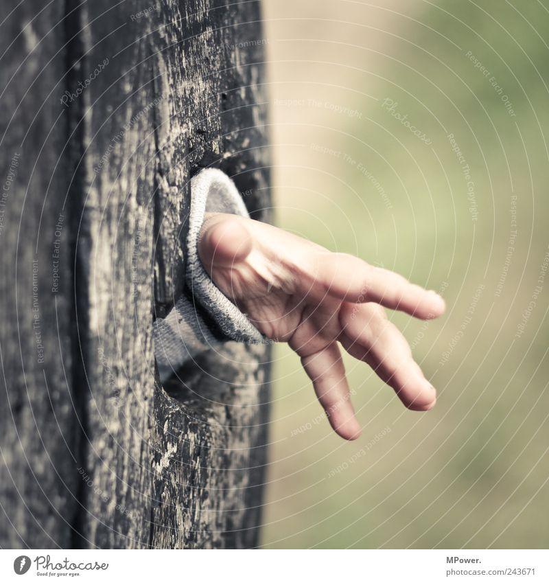 entdeckertour Mensch Kind Hand grün Mädchen grau Holz klein Kindheit Finger 4 Kleinkind entdecken Loch winken Kinderspiel
