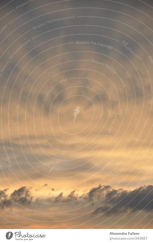 Abendhimmel II Himmel Wolken dunkel Luft Umwelt Klima Nachthimmel unheimlich
