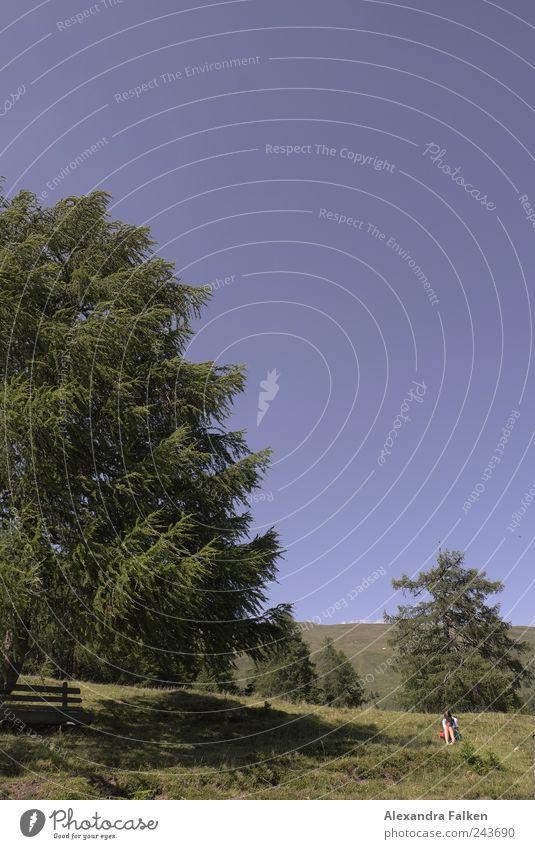Heidi Kindheit Leben 1 Mensch Umwelt Natur Landschaft Pflanze Himmel Wolkenloser Himmel Sommer Baum Wiese Hügel Alpen Berge u. Gebirge Bundesland Kärnten