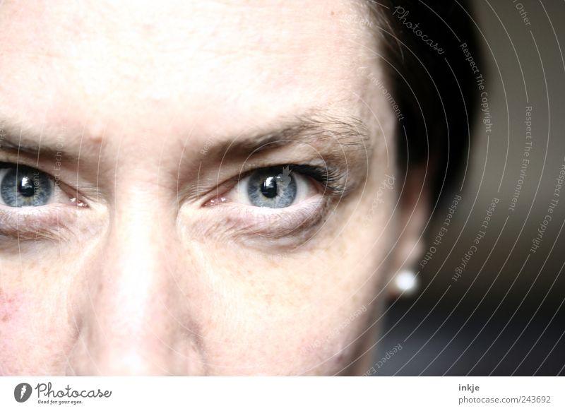 Augen sagen mehr als Worte... Frau Erwachsene Leben Gesicht Ohrringe schwarzhaarig beobachten glänzend Kommunizieren Blick kalt nah rebellisch Wut blau Gefühle