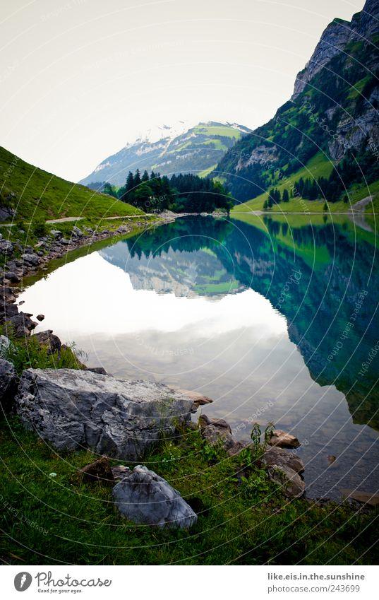 der schatz im silbersee Erholung Ausflug Umwelt Natur Landschaft Urelemente Wasser Himmel Wolken Frühling Sommer Baum Gras Sträucher Hügel Felsen Alpen