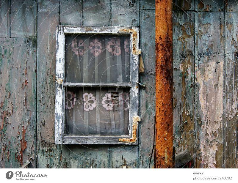 Wohnwelten Häusliches Leben Wohnung Haus Gardine Vorhang Hütte Bauwerk Gebäude Mauer Wand Fenster Dachrinne Holz Glas Metall Rost alt dreckig einfach historisch