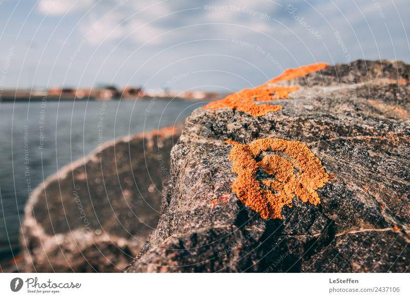 Leben auf dem Stein Himmel Natur nackt Sommer blau Pflanze Wasser Sonne Erholung Wolken Umwelt Küste grau orange Horizont
