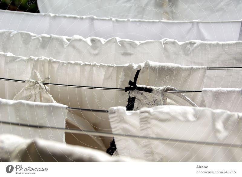 Weiß mit kleinem Fehler weiß schwarz Linie Metall Wohnung nass Sauberkeit rein Häusliches Leben Reinigen Streifen trocken hängen Wäsche waschen Schleife