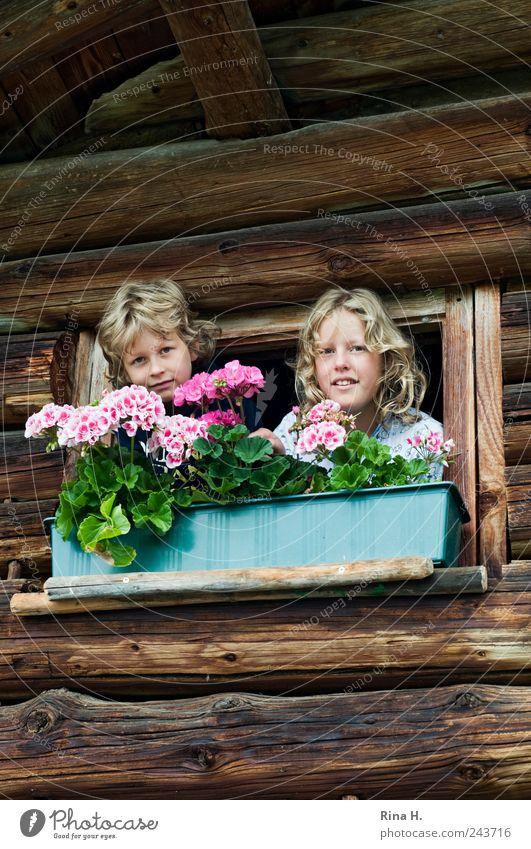Heiter bis wolkig Mensch Kind Mädchen Sommer Ferien & Urlaub & Reisen Junge oben Holz Stimmung blond Fassade Lifestyle frisch authentisch Lebensfreude Kindheit