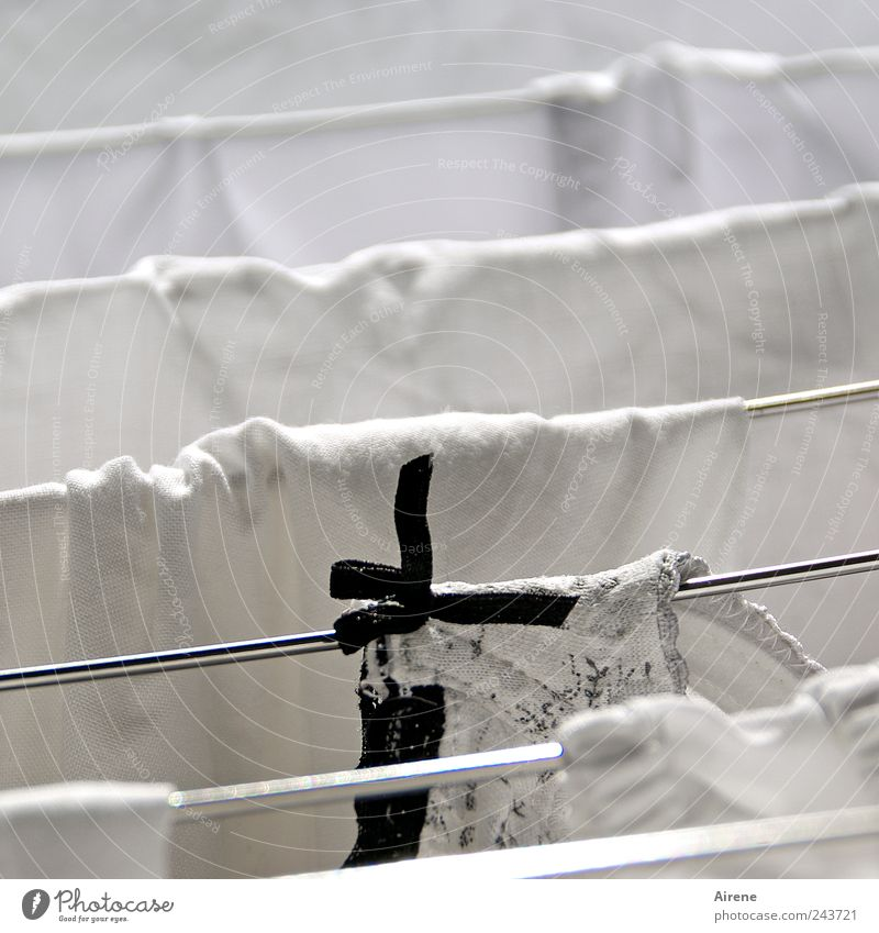 Schwarzweißwäsche schwarz Linie Metall nass Bekleidung frisch Sauberkeit rein Häusliches Leben Streifen Stoff trocken hängen Unterwäsche Wäsche waschen