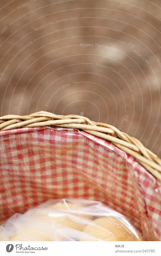 in der Tüte sind die Brötchen... Natur Ferien & Urlaub & Reisen Umwelt Essen Feste & Feiern braun rosa Häusliches Leben Erde Dekoration & Verzierung Geburtstag Lebensfreude rund Ostern Hochzeit Kitsch