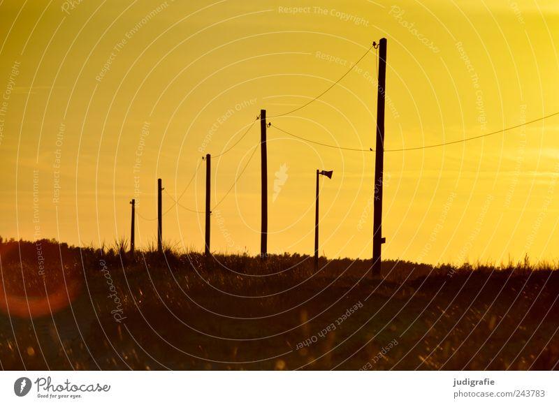 Energie Natur Himmel Pflanze Sommer Landschaft Stimmung Umwelt Energiewirtschaft Kabel außergewöhnlich Sonnenenergie Lautsprecher Strommast Prerow