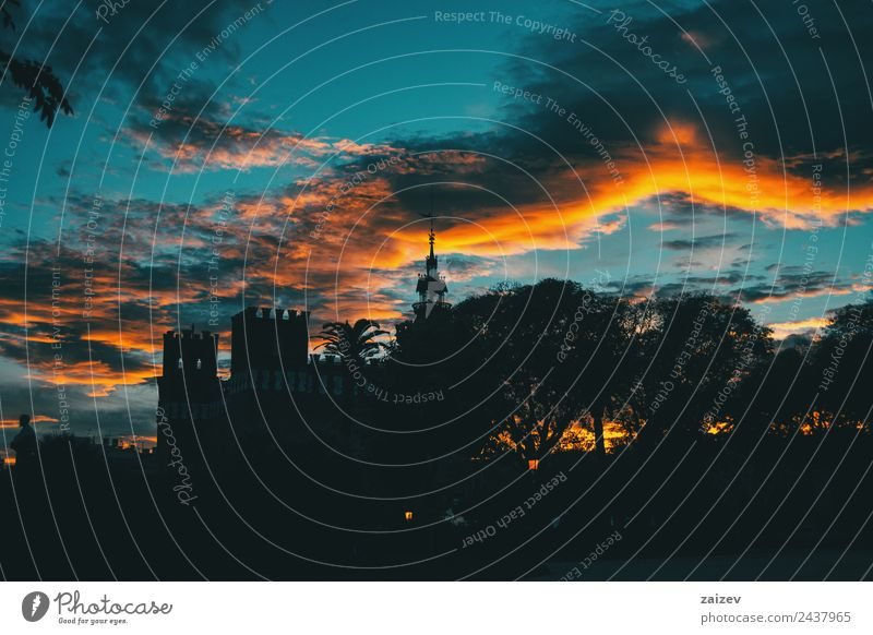 Silhouette des Ciutadella-Gartens über farbenfrohem Sonnenuntergangshimmel schön Ferien & Urlaub & Reisen Tourismus Natur Landschaft Himmel Wolkenloser Himmel