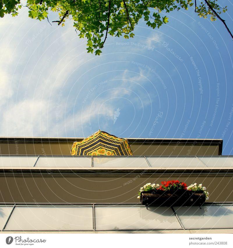 individuelles wohnen. Himmel blau grün Baum Pflanze Sommer Ferien & Urlaub & Reisen Wolken ruhig Haus gelb Erholung Architektur Frühling Wohnung Fassade