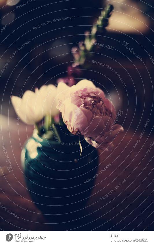 Nothing lasts forever... Blume schön Vase altehrwürdig Pfingstrose Lichtstimmung Dekoration & Verzierung Blumenvase dunkel Tisch Romantik Traurigkeit Gefühle