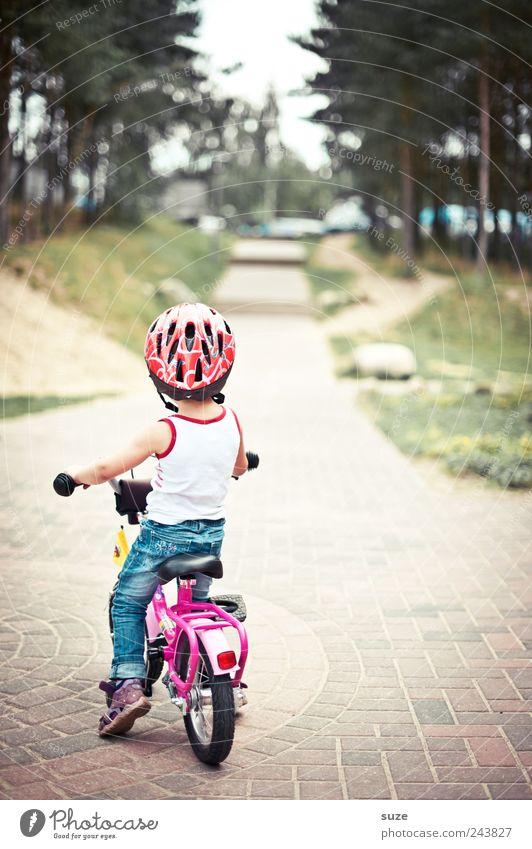 Mini-Bike Freizeit & Hobby Fahrrad Kind Mensch Kleinkind Mädchen Kindheit 1 3-8 Jahre Baum Verkehrswege Fahrradfahren Wege & Pfade Fußweg Helm stehen warten