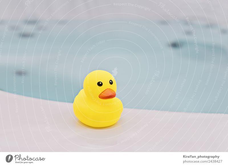Kind Sommer blau Meer Freude gelb Glück klein Spielen Vogel Kindheit Baby niedlich Badewanne Sauberkeit Symbole & Metaphern