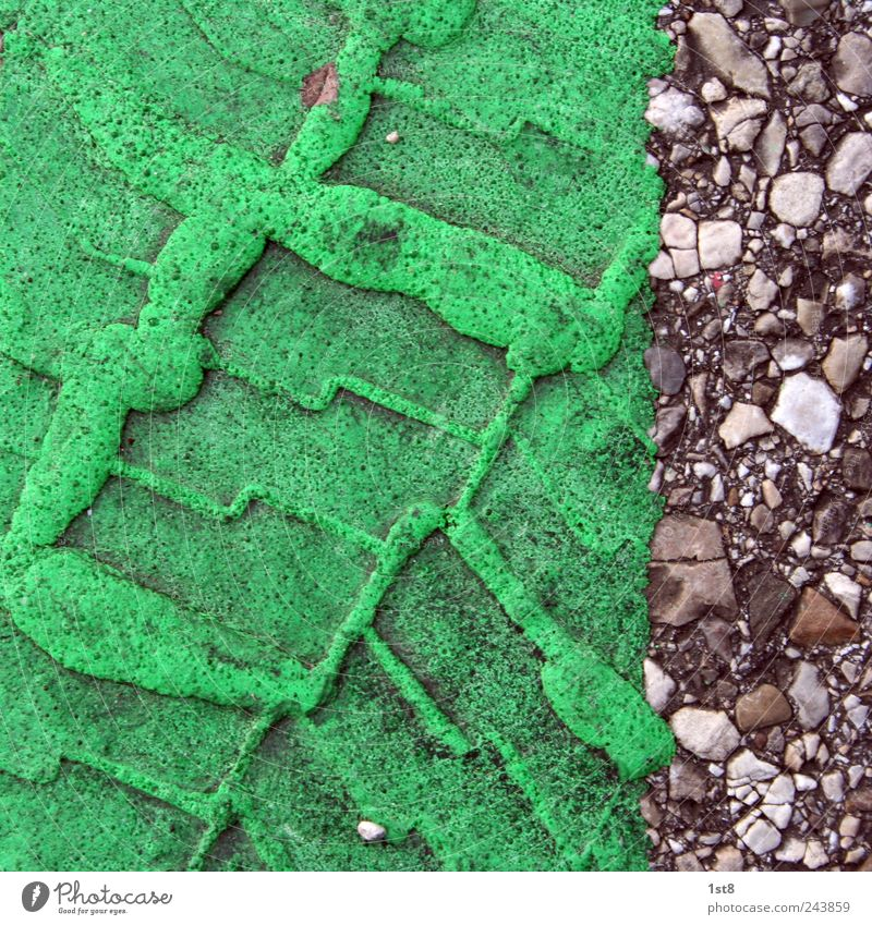 bubblegum alt grün schön Straße Wege & Pfade dreckig Beton Verkehr verrückt außergewöhnlich leuchten Sauberkeit Asphalt Spuren Autobahn Verkehrswege