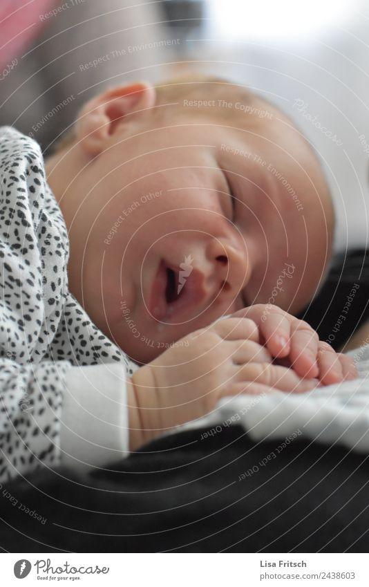 schlafendes Baby, Neugeborenes, Junge Kindererziehung maskulin Gesicht 1 Mensch 0-12 Monate Erholung träumen niedlich Zufriedenheit Sicherheit Schutz