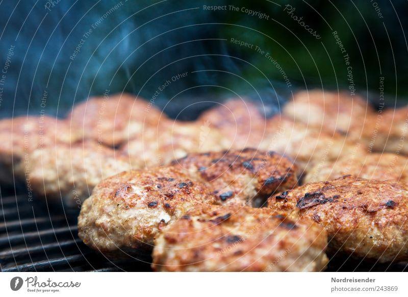 Fast fertig Sommer Ernährung Lebensmittel Übergewicht Rauch Grillen lecker Fett Fleisch Picknick Fastfood Grill Grillrost Imbiss Gastronomie Kochen & Garen & Backen
