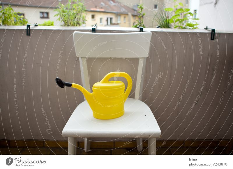 Ich hab Sommerpause Gießkanne Mauer Balkon Hinterhof Kräuter & Gewürze Pflanze gießen gelb Außenaufnahme Zentralperspektive