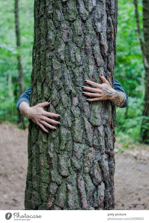 [AM105] - Hände einer jungen Dame umschlingen einen Baum Lifestyle Gesundheit Alternativmedizin harmonisch Wohlgefühl Zufriedenheit Erholung Meditation Kur