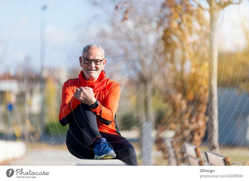 Mensch Natur Mann alt Sommer Pflanze grün Erholung ruhig Erwachsene Lifestyle Senior Sport Gras Glück Freizeit & Hobby