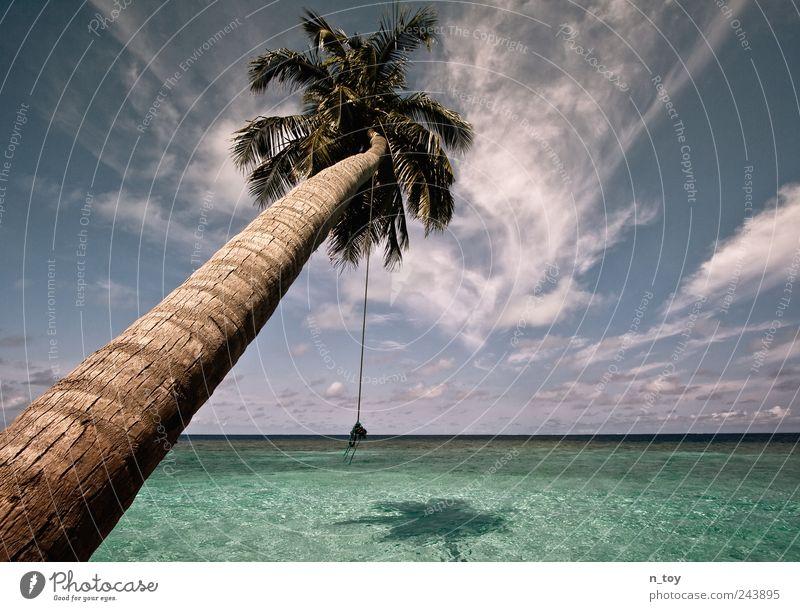 Lieblingsplatz Natur Wasser Himmel Wolken Horizont Sommer Baum Palme Küste Strand Riff Meer Insel Erholung Ferien & Urlaub & Reisen Malediven türkis