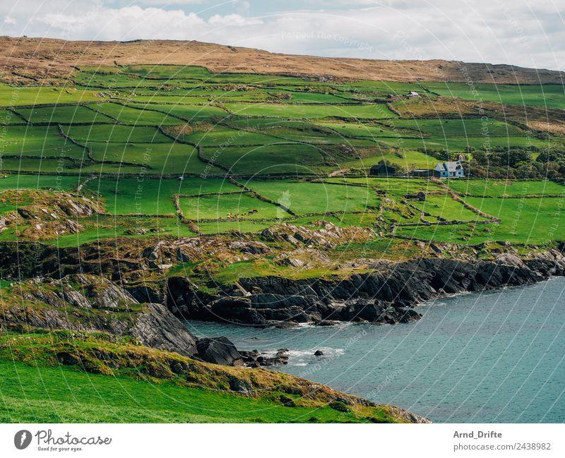 Küste Irland Ferien & Urlaub & Reisen Tourismus Ausflug Natur Landschaft Himmel Wolken Frühling Sommer Schönes Wetter Wiese Feld Hügel Wellen Meer Atlantik