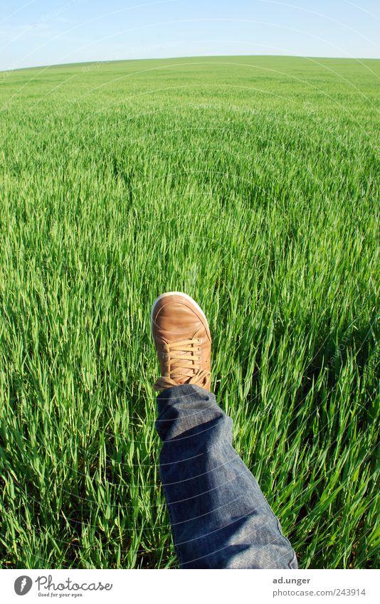 nach Insgrün Landwirtschaft Forstwirtschaft Energiewirtschaft Beine Fuß Natur Landschaft Klima Klimawandel Wind Gras Feld Fußspur Freundlichkeit nachhaltig