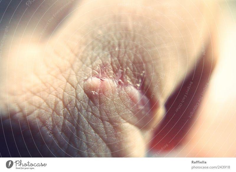 Heilung Hand Angst rosa Haut Finger Schmerz Mensch Wunde Makroaufnahme Gesundheitswesen Narbe verletzen Nahaufnahme Strukturen & Formen