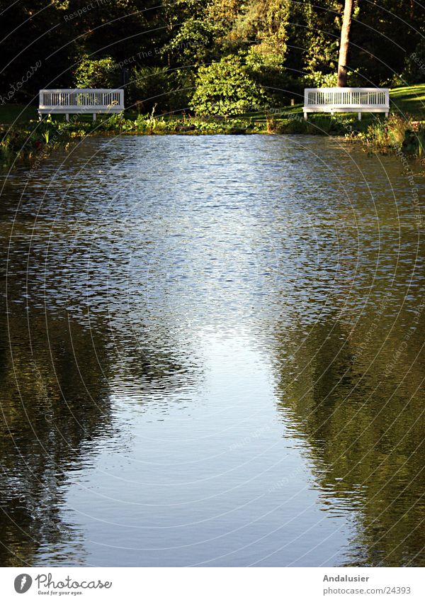 Stille am Wasser ruhig Trauer Bank Erinnerung Friedhof
