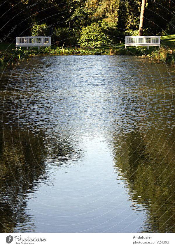 Stille am Wasser Wasser ruhig Trauer Bank Erinnerung Friedhof
