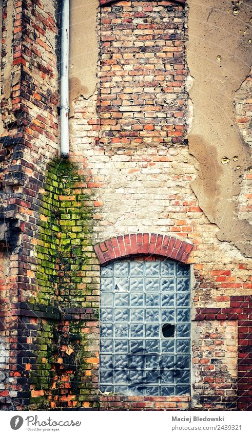 Eine alte Backsteingebäudewand Häusliches Leben Haus Fabrik Gebäude Architektur Mauer Wand Fassade Fenster dreckig gruselig hässlich kaputt Stadt Traurigkeit