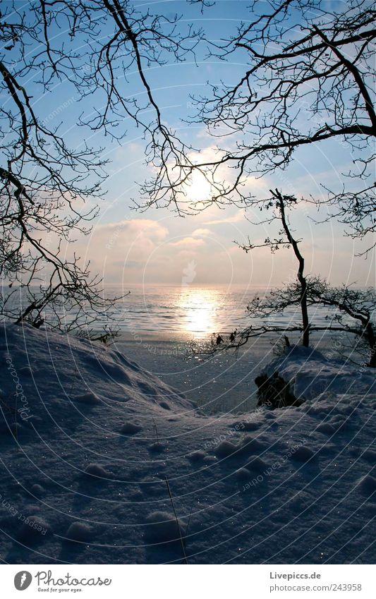 Boddenstille Himmel Natur Wasser Landschaft Wolken Strand Winter kalt Umwelt Küste Eis Schönes Wetter Frost Seeufer