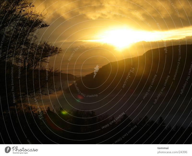 Cloudy Morning Wolken Sonnenaufgang Tanne Nebel Licht Berge u. Gebirge
