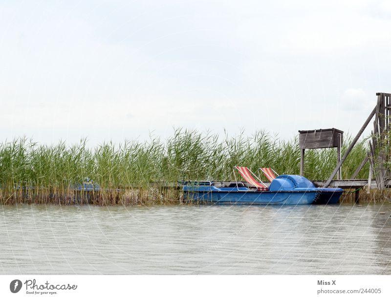 olles Tretboot Ferien & Urlaub & Reisen Ausflug Sommerurlaub Wasser Gras Küste Seeufer Meer Bootsfahrt Wasserfahrzeug Schwimmen & Baden alt Anlegestelle Steg